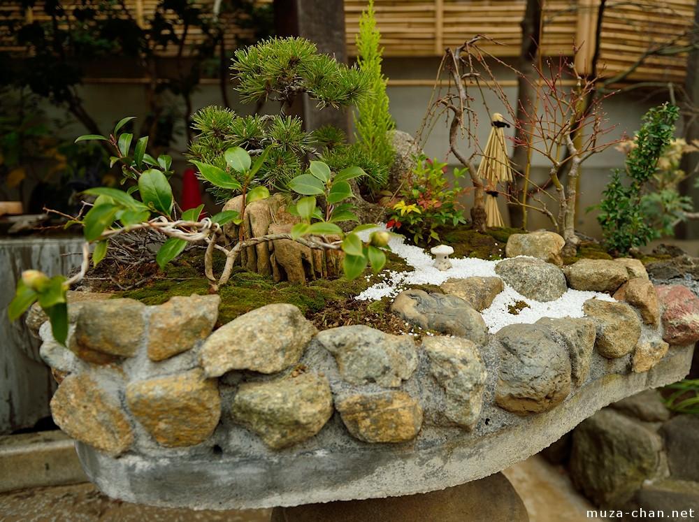 Mini Jardin Japonais Zen Cofop Fr